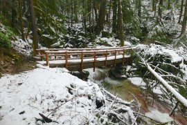 Rainy Creek bridge. A big tree just missed it on the far side