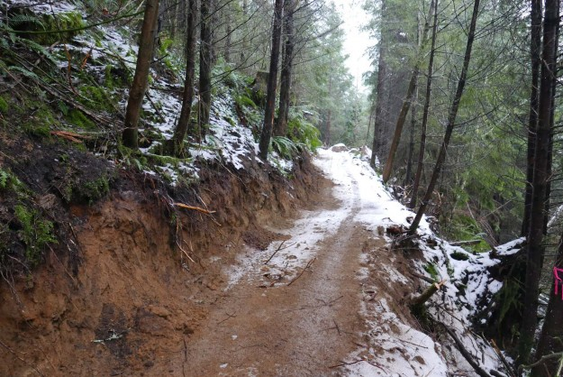 The new trail is roughed in with freshly cut banks for now